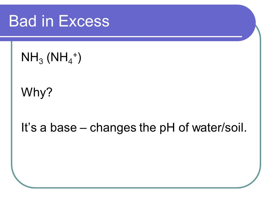 Bad in Excess NH3 (NH4+) Why