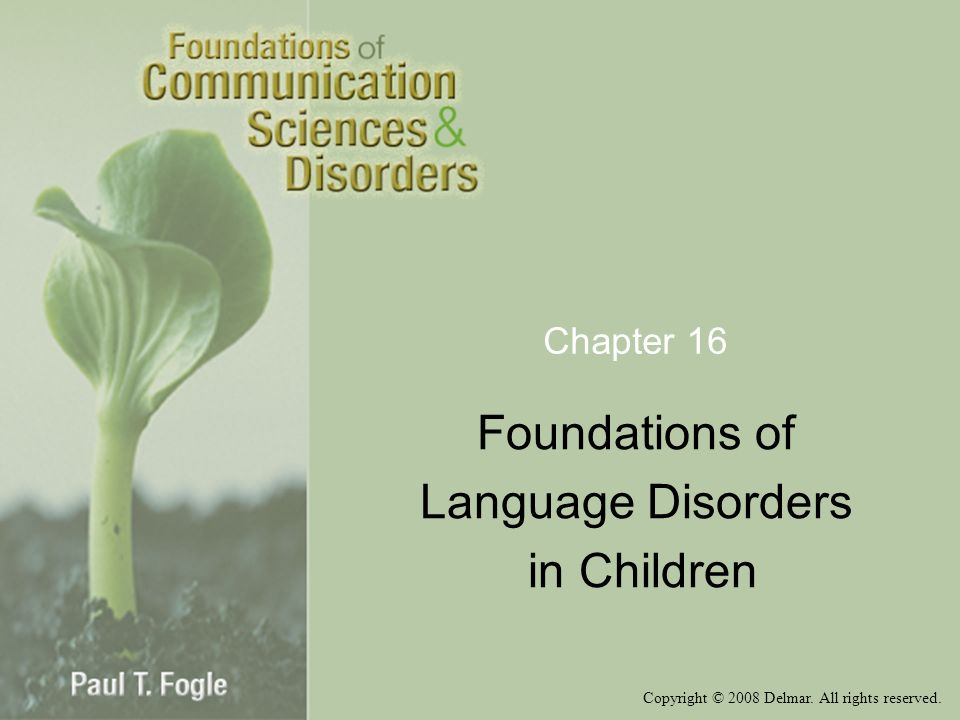 Foundations of Language Disorders in Children