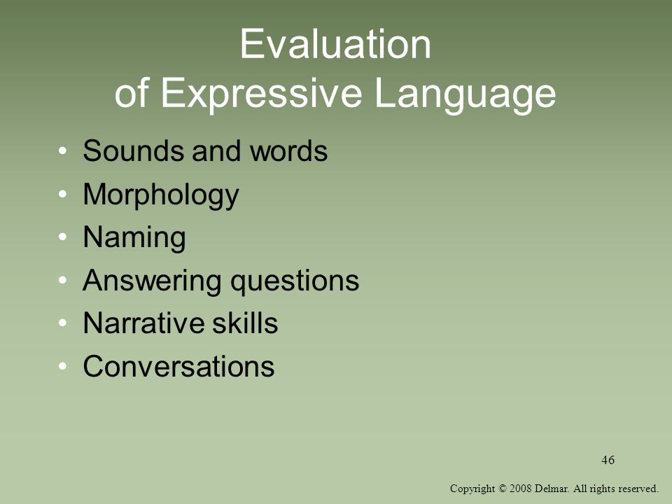 Evaluation of Expressive Language