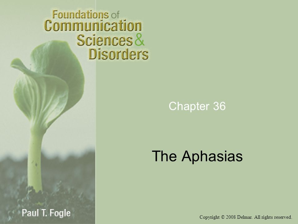 Chapter 36 The Aphasias