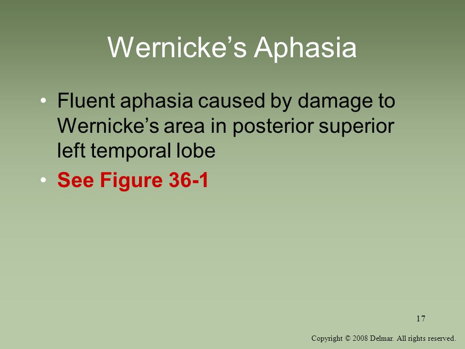 Wernicke's Aphasia Fluent aphasia caused by damage to Wernicke's area in posterior superior left temporal lobe.