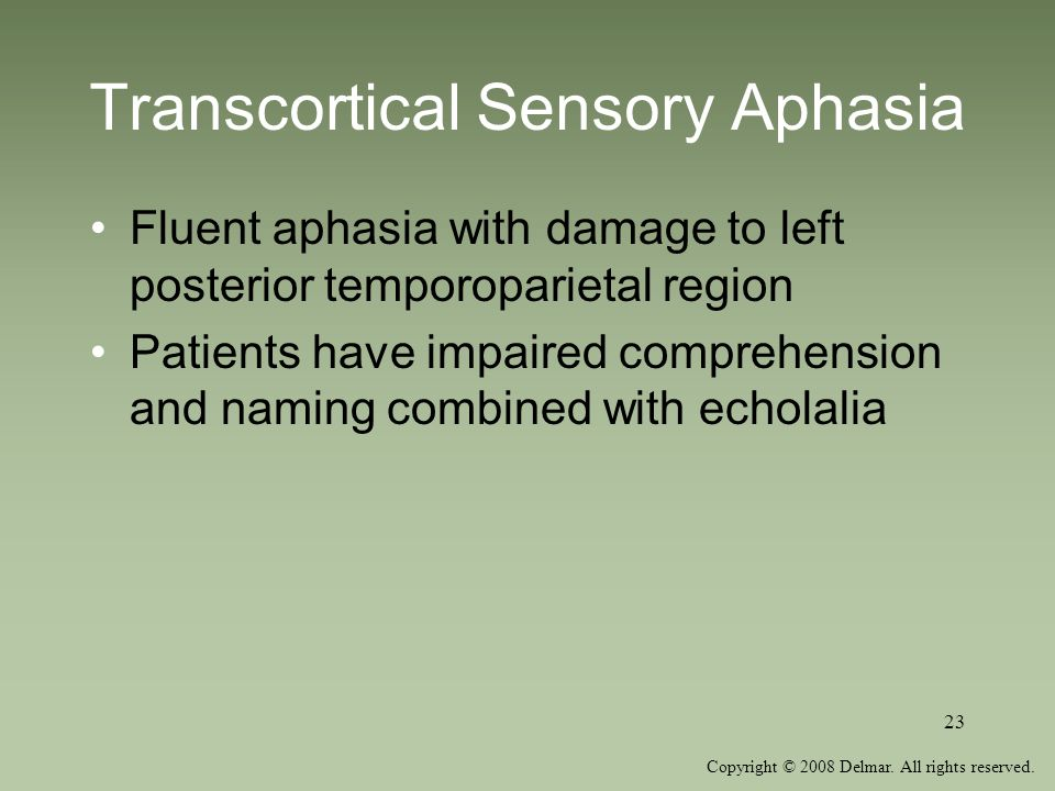 Transcortical Sensory Aphasia