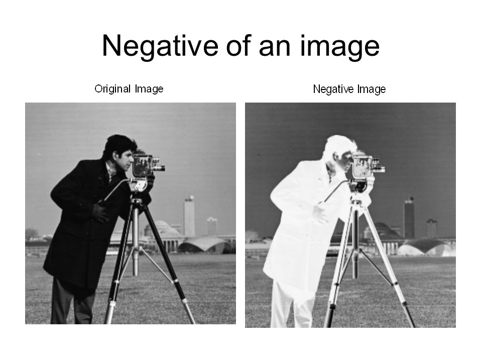 Negative of an image