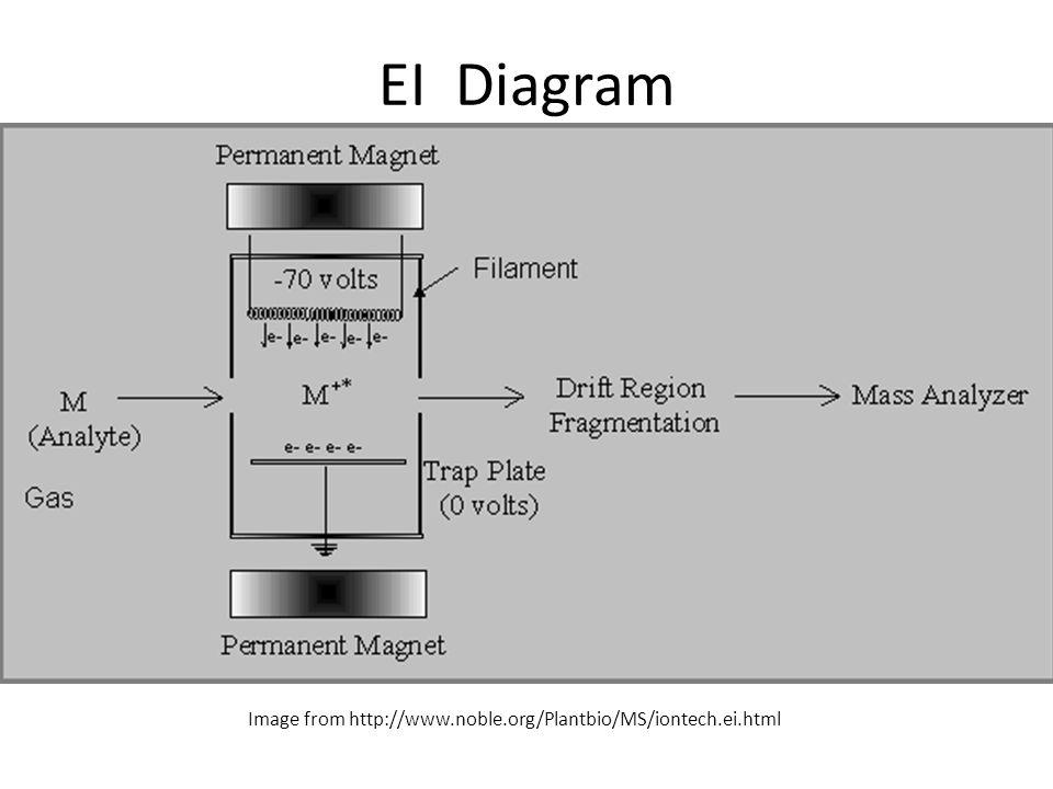 EI Diagram Image from http://www.noble.org/Plantbio/MS/iontech.ei.html
