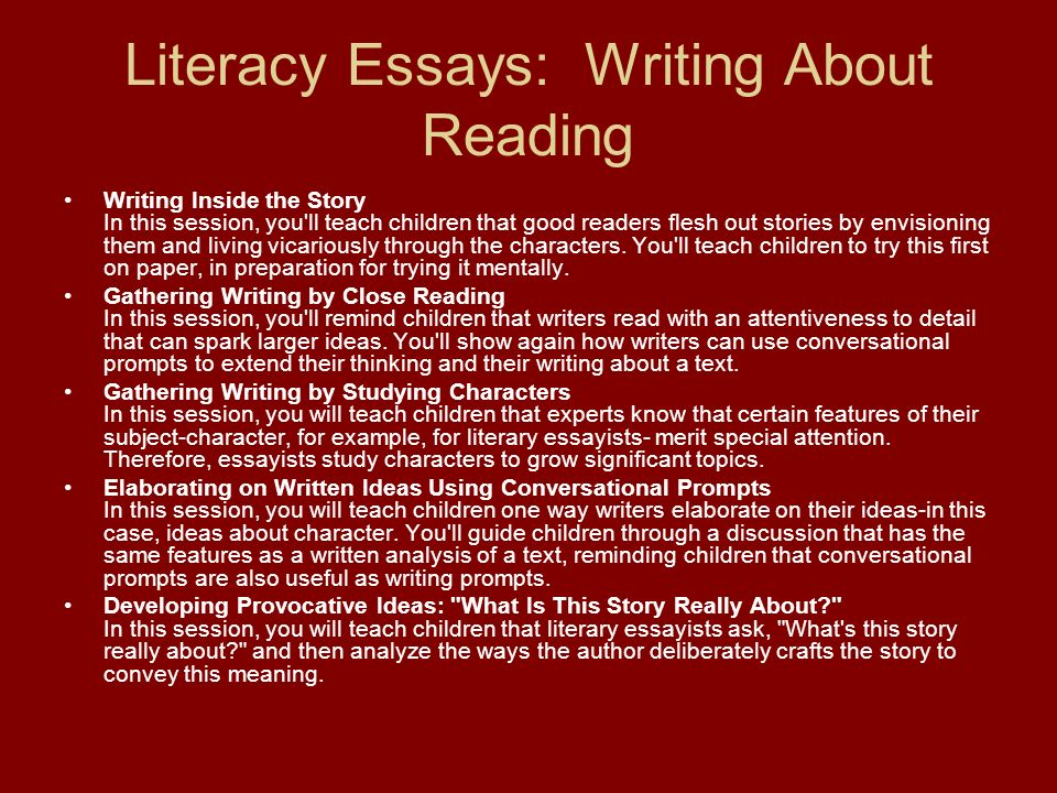 common core state standards in writing ppt video online  17 literacy essays