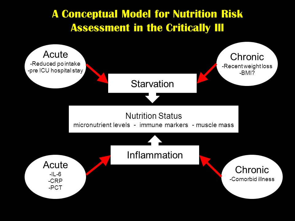 A Conceptual Model for Nutrition Risk Assessment in the Critically Ill