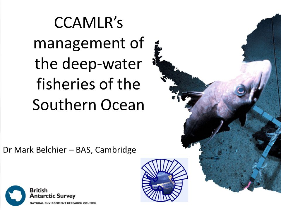 CCAMLR's management of the deep-water fisheries of the Southern Ocean