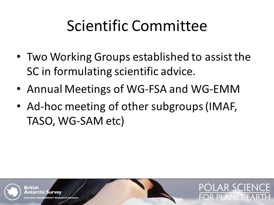 Scientific Committee Two Working Groups established to assist the SC in formulating scientific advice.