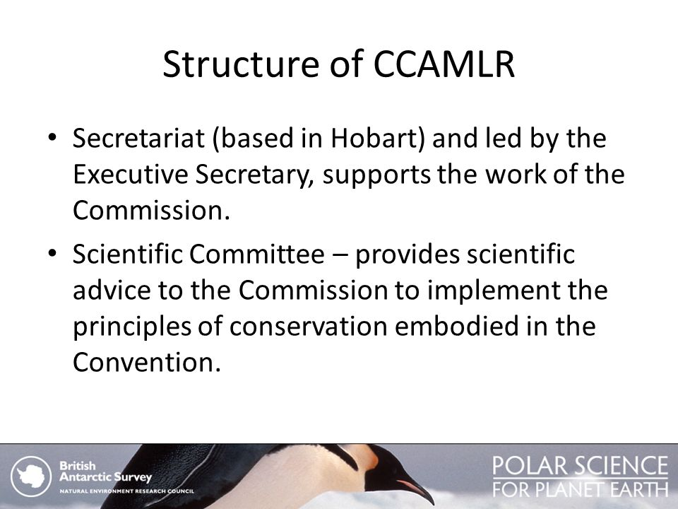 Structure of CCAMLR Secretariat (based in Hobart) and led by the Executive Secretary, supports the work of the Commission.