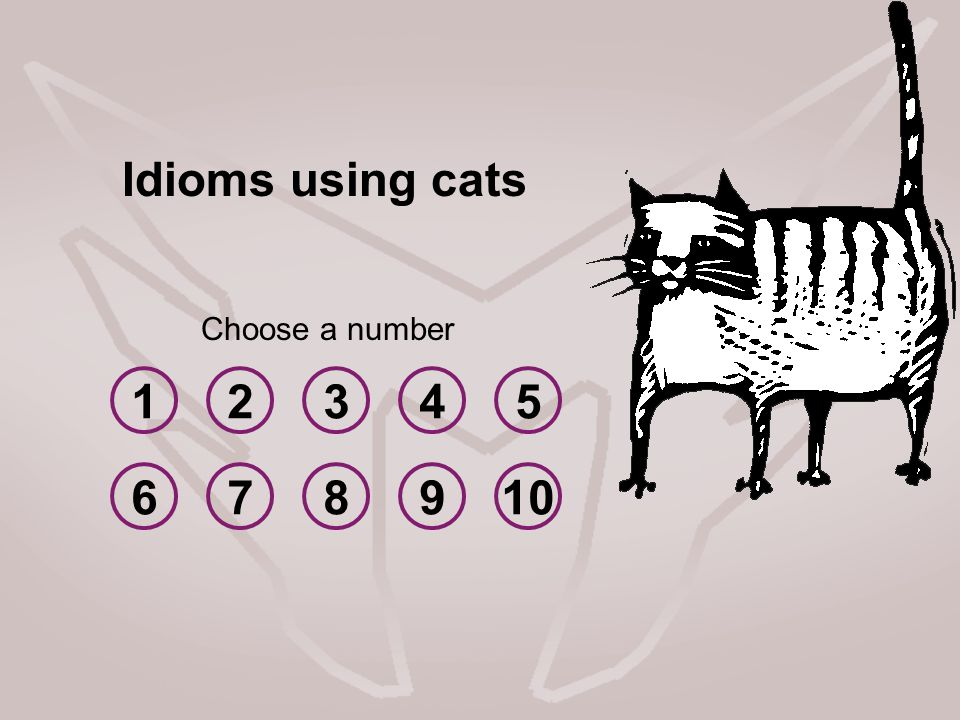 Idioms using cats Choose a number 1 2 3 4 5 6 7 8 9 10
