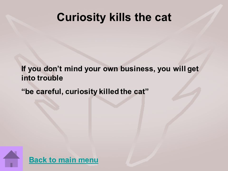 Curiosity kills the cat
