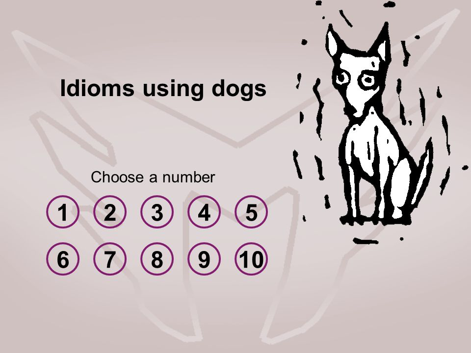 Idioms using dogs Choose a number 1 2 3 4 5 6 7 8 9 10