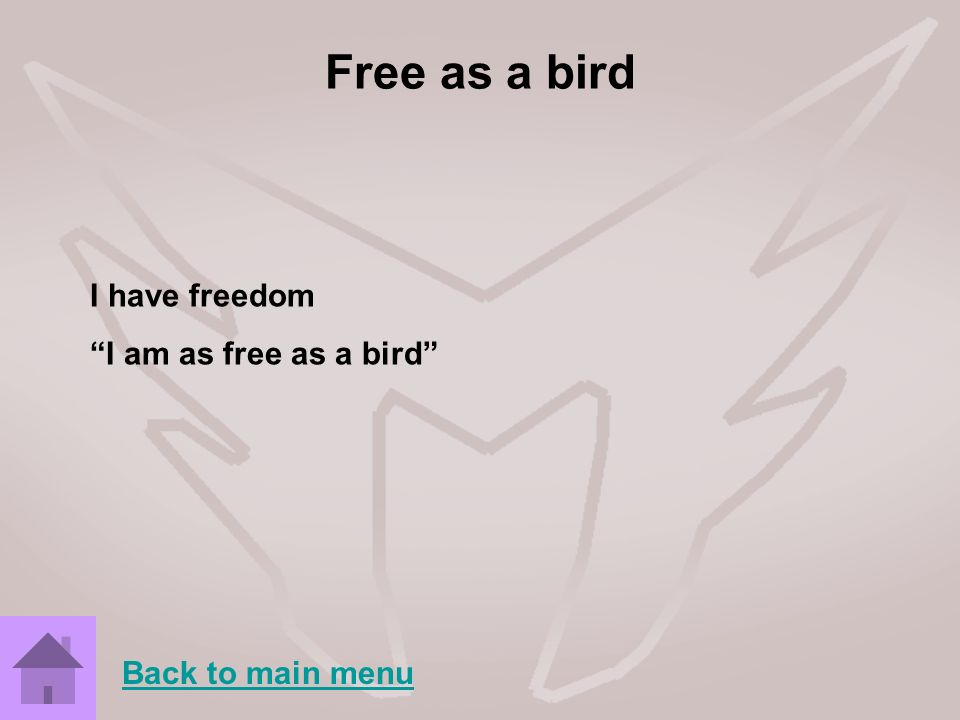 Free as a bird I have freedom I am as free as a bird