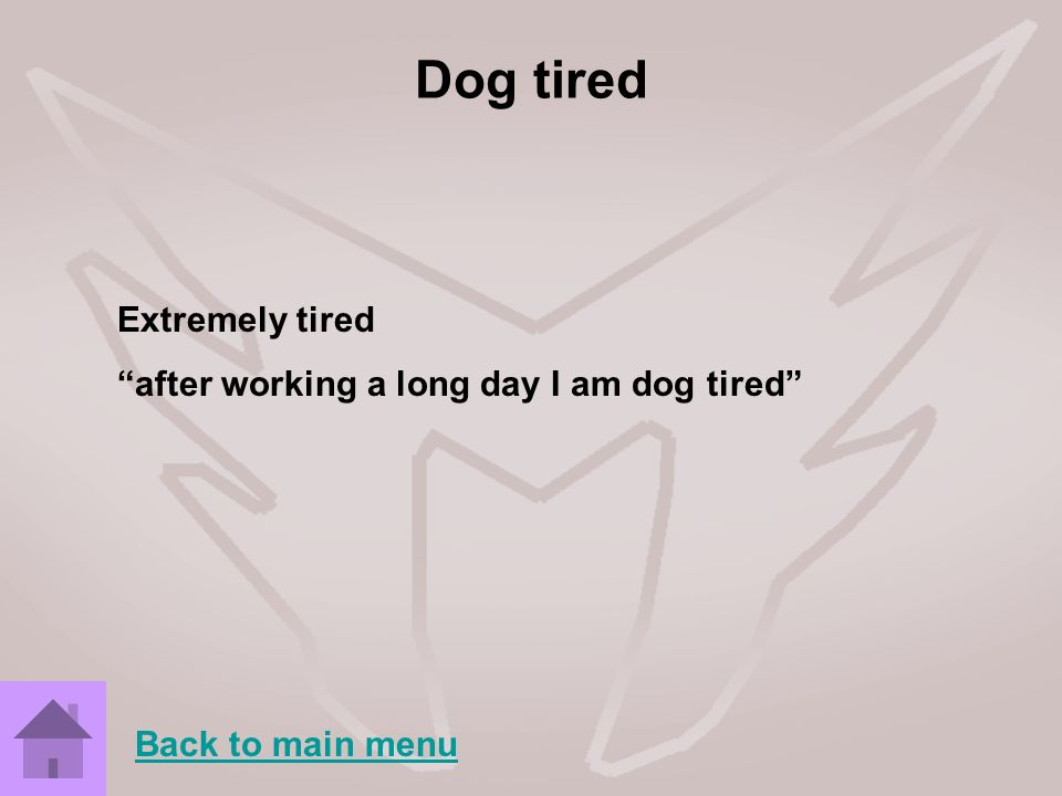 Dog tired Extremely tired after working a long day I am dog tired