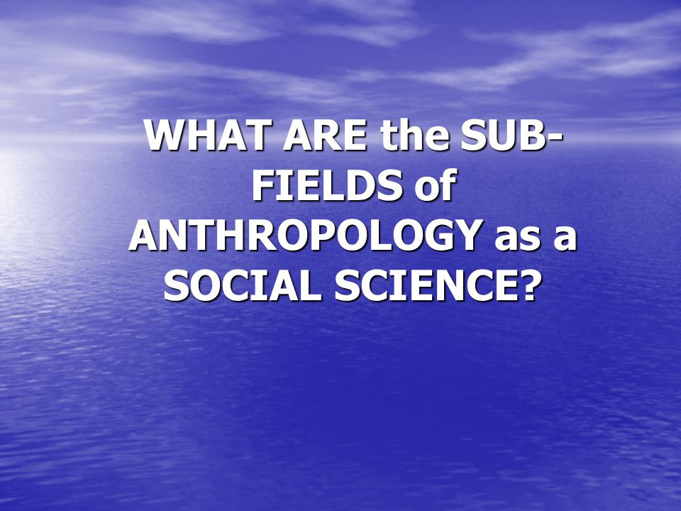 WHAT ARE the SUB-FIELDS of ANTHROPOLOGY as a SOCIAL SCIENCE