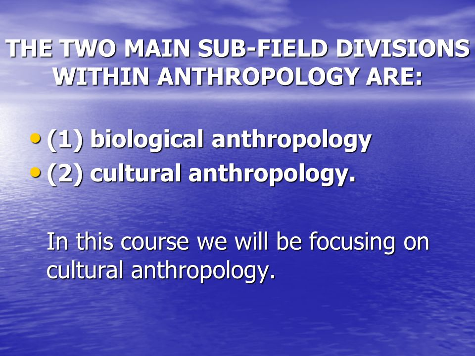 THE TWO MAIN SUB-FIELD DIVISIONS WITHIN ANTHROPOLOGY ARE: