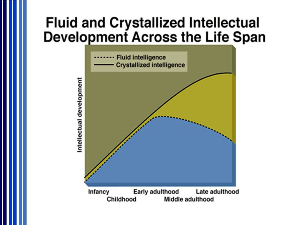 Fluid intelligence - reaches its peak before age 20 and then remains steady throughout life