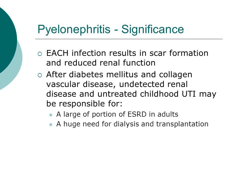 Pyelonephritis - Significance