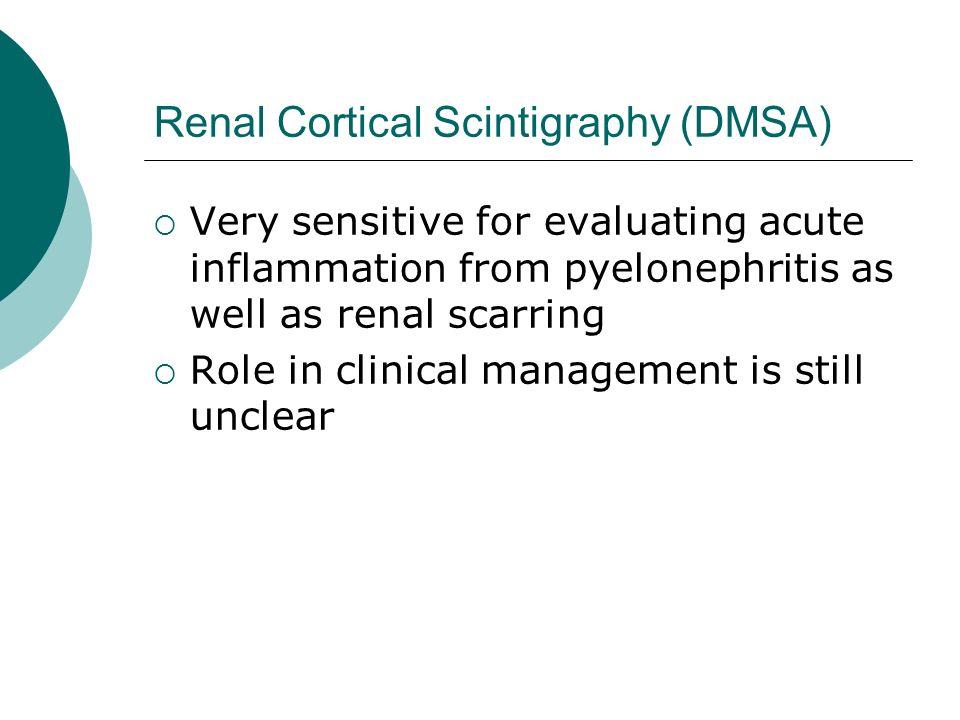 Renal Cortical Scintigraphy (DMSA)