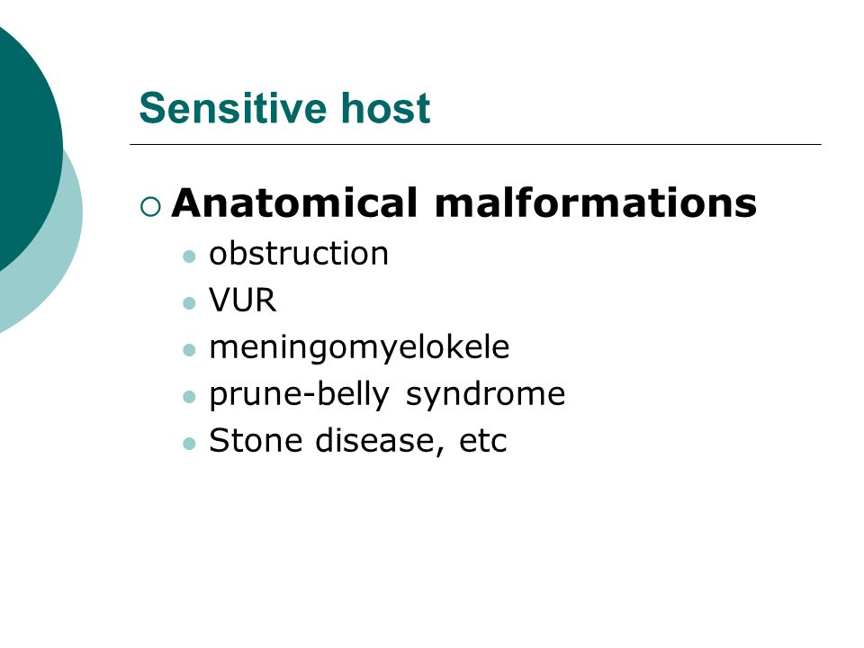 Sensitive host Anatomical malformations obstruction VUR