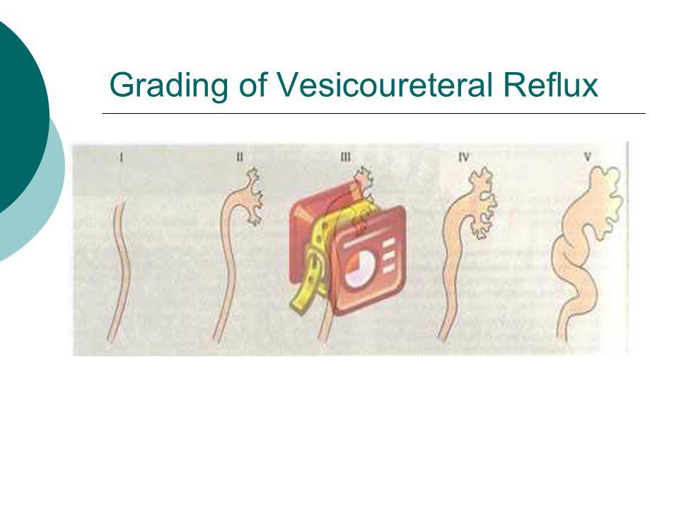 Grading of Vesicoureteral Reflux