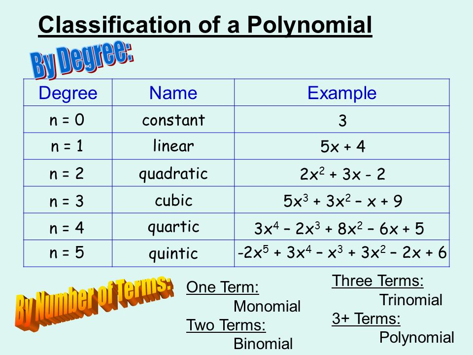 classifying polynomials worksheet Termolak – Polynomial Worksheet