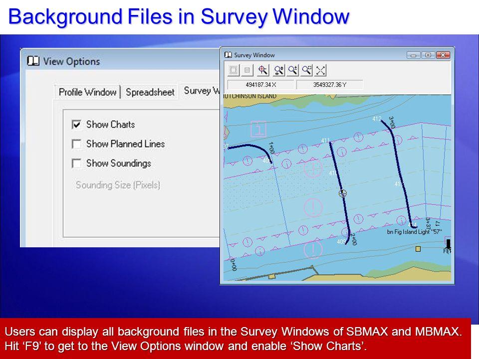 Background Files in Survey Window