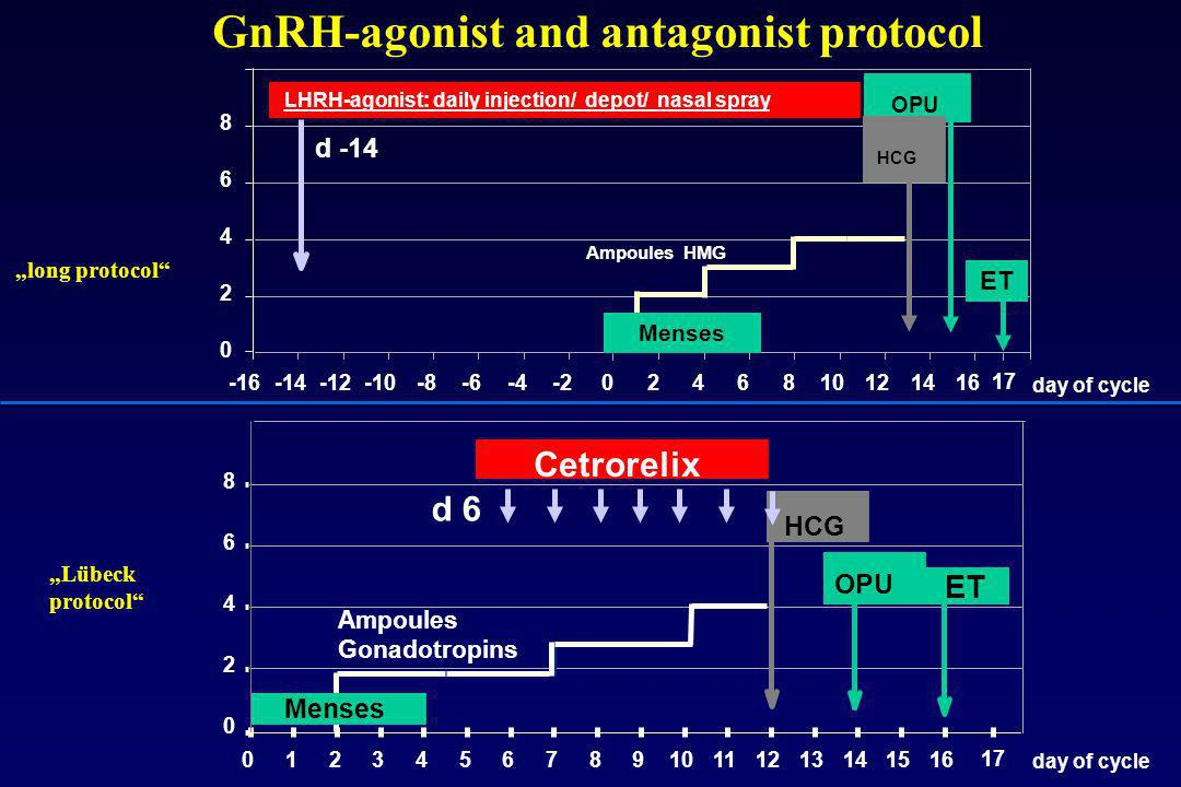GnRH-agonist and antagonist protocol