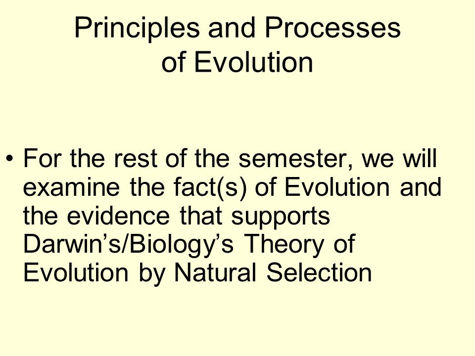 Principles and Processes of Evolution