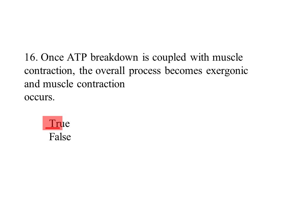 16. Once ATP breakdown is coupled with muscle contraction, the overall process becomes exergonic and muscle contraction occurs. True False
