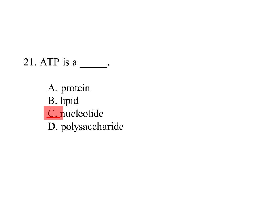 21. ATP is a _____. A. protein B. lipid C. nucleotide D. polysaccharide