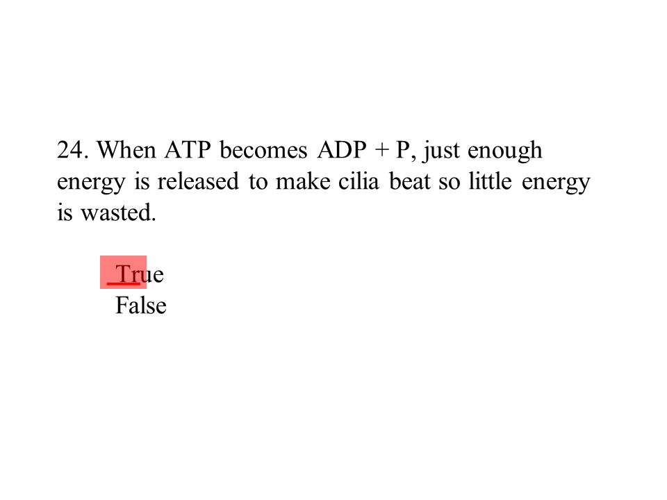 24. When ATP becomes ADP + P, just enough energy is released to make cilia beat so little energy is wasted. True False
