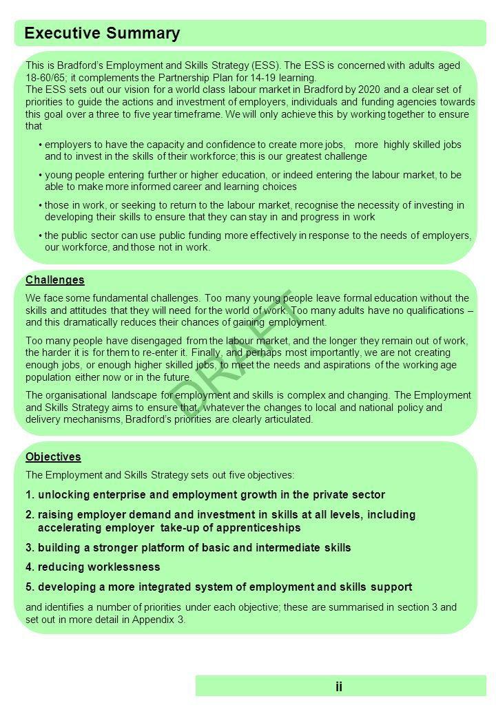 Executive Summary ii Challenges Objectives