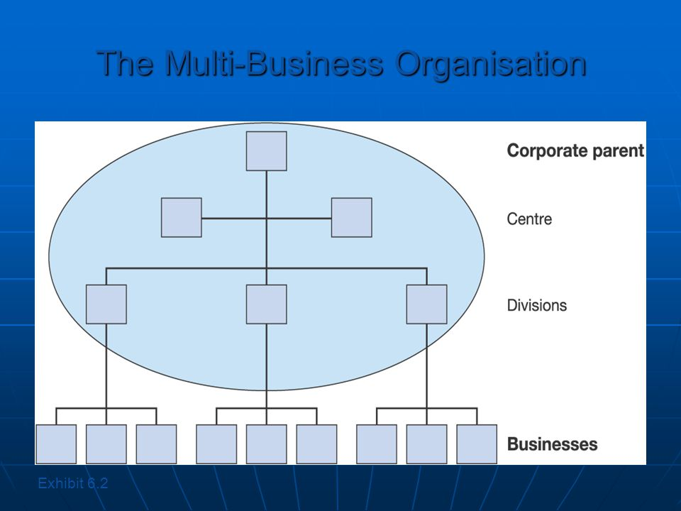 The Multi-Business Organisation