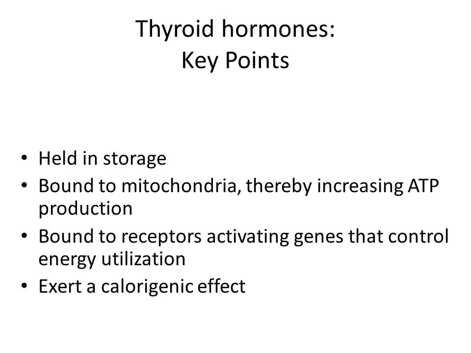 Thyroid hormones: Key Points