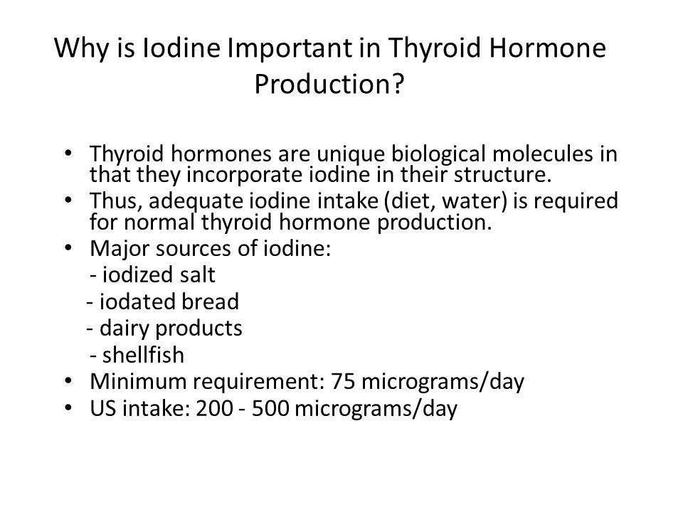 Why is Iodine Important in Thyroid Hormone Production