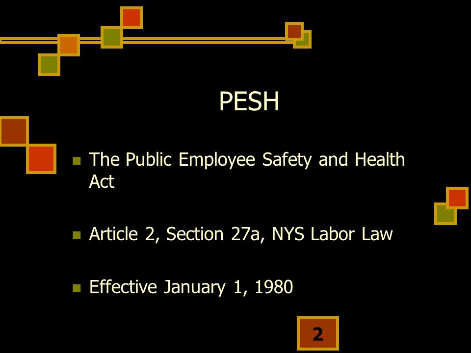 PESH The Public Employee Safety and Health Act