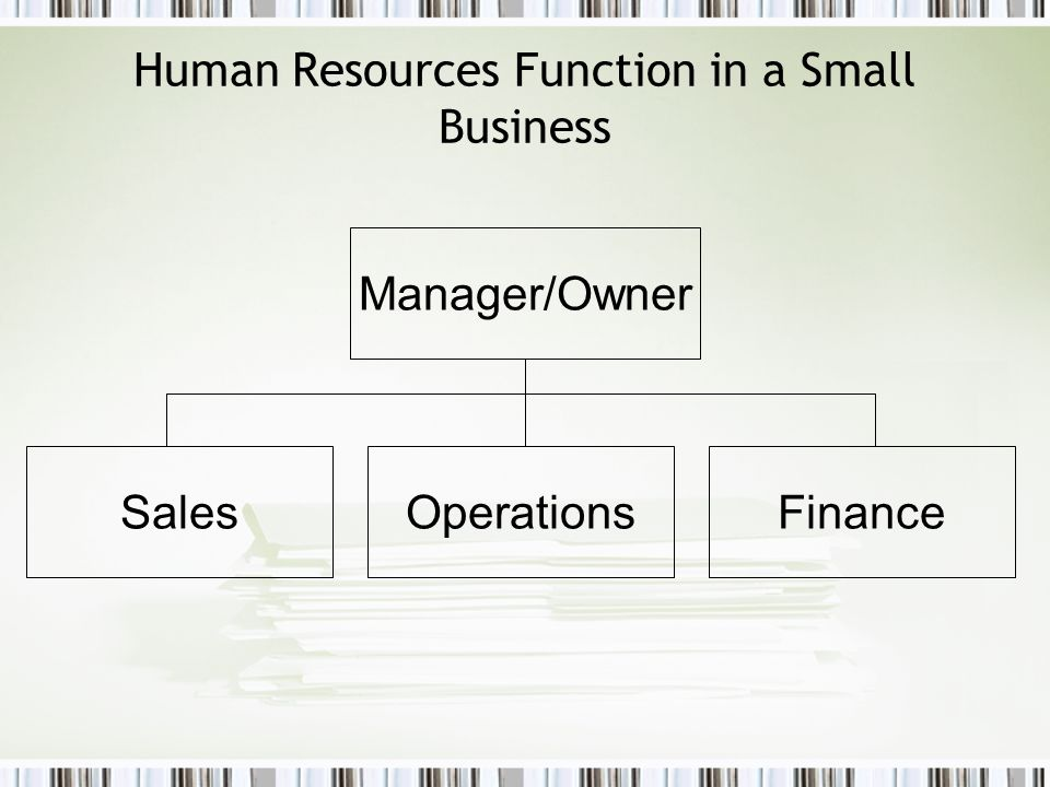Human Resources Function in a Small Business