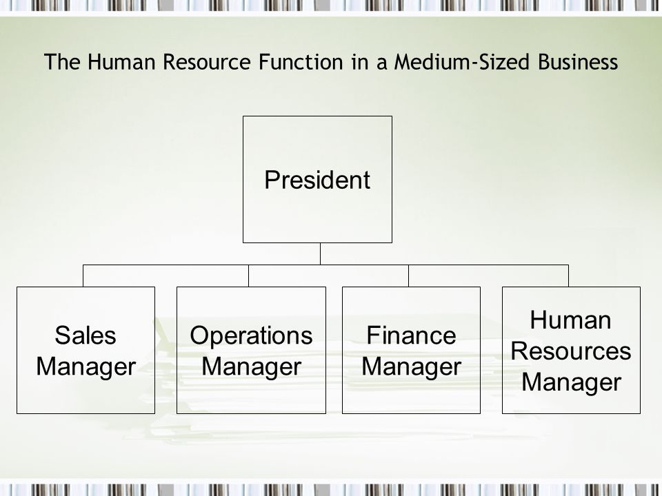 The Human Resource Function in a Medium-Sized Business