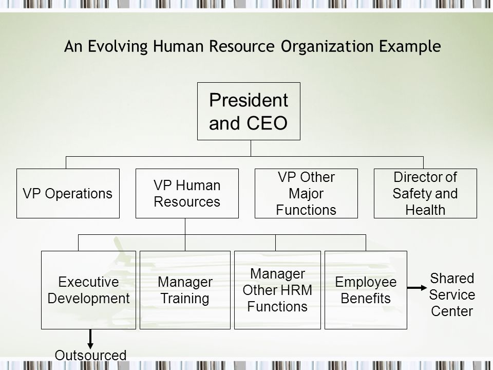 An Evolving Human Resource Organization Example