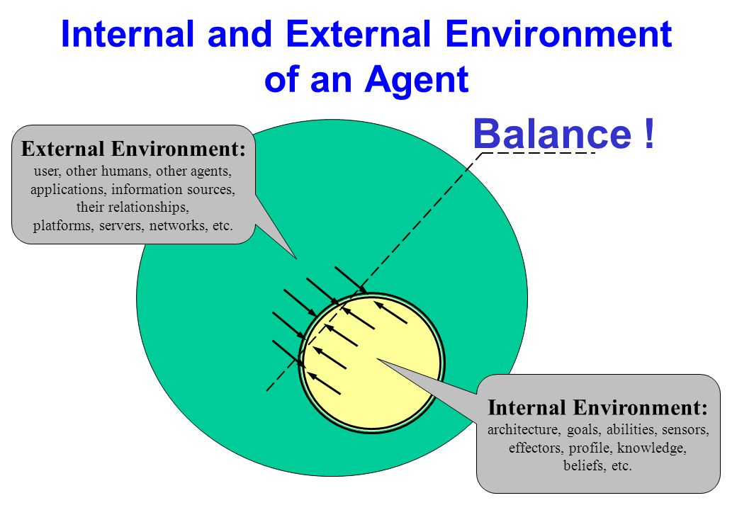 Internal and External Environment of an Agent