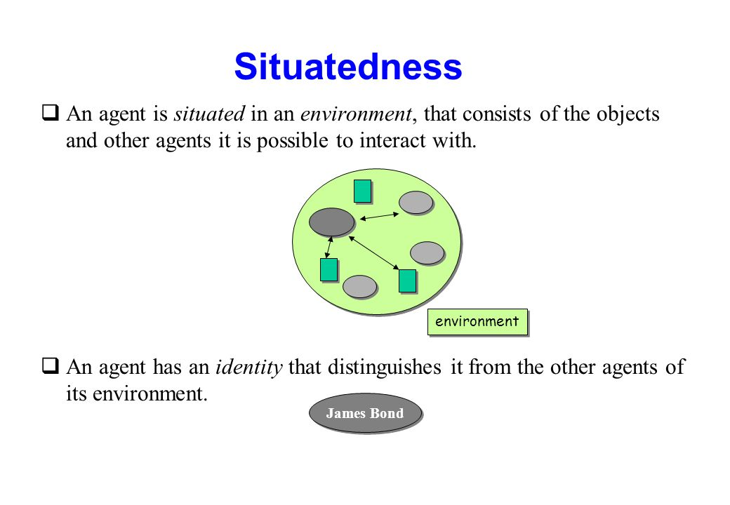 Situatedness An agent is situated in an environment, that consists of the objects and other agents it is possible to interact with.