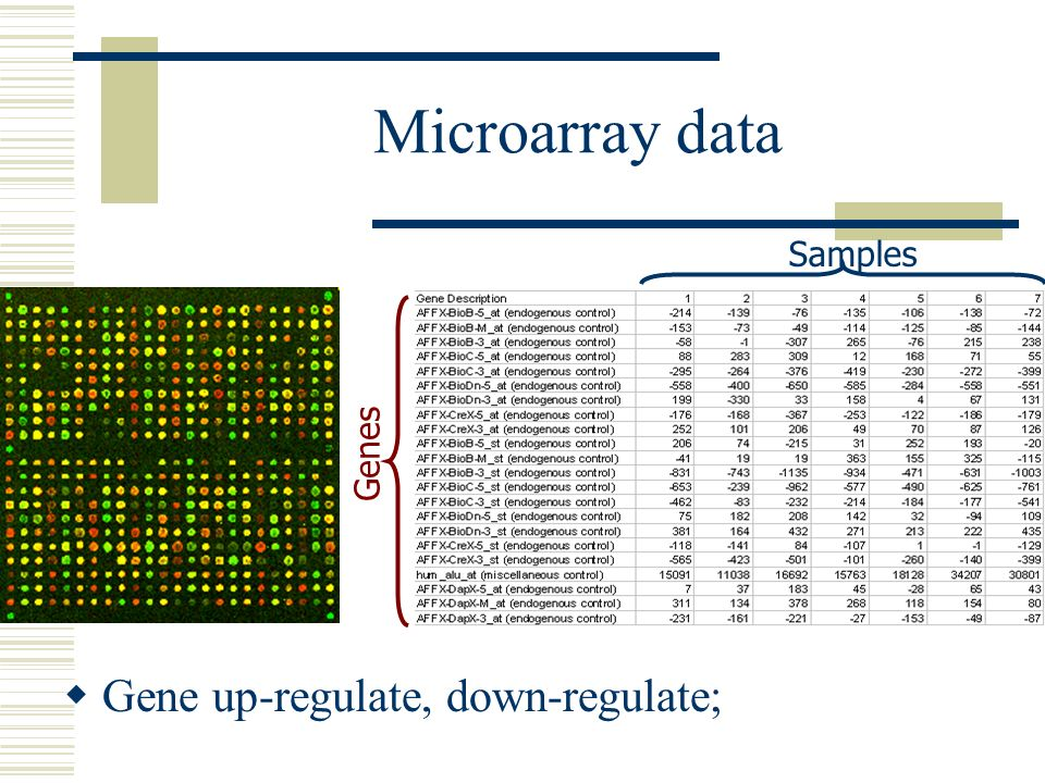 Microarray data Genes Samples Gene up-regulate, down-regulate;