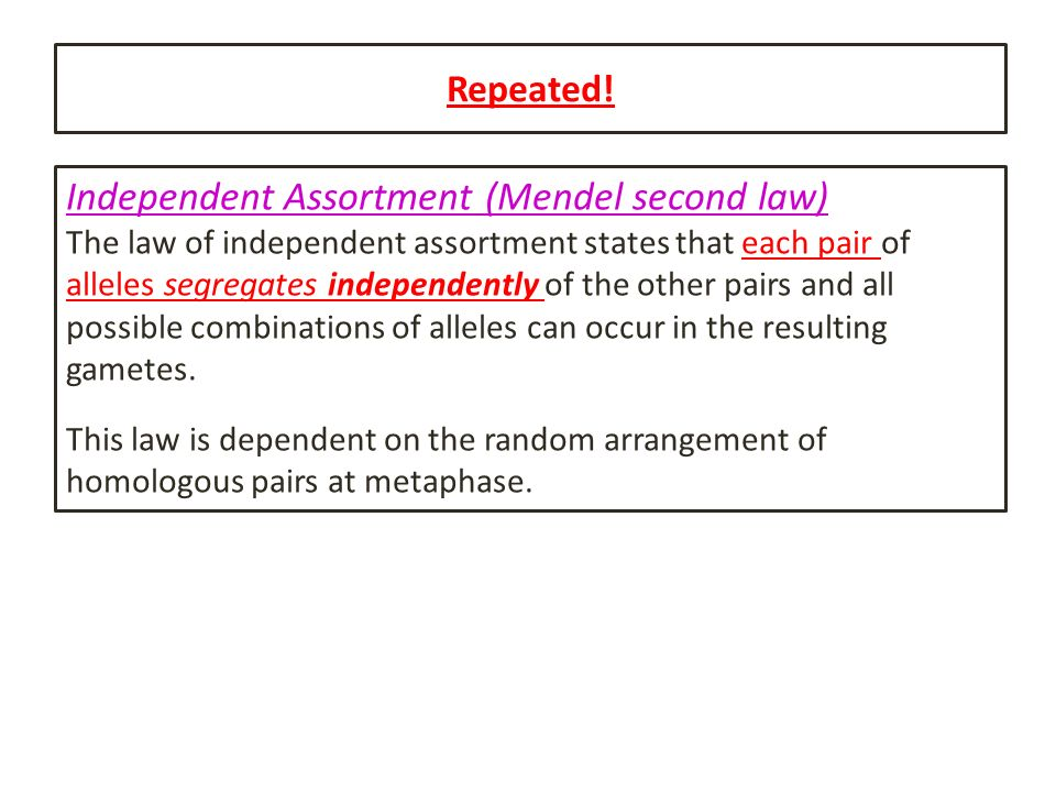 Independent Assortment (Mendel second law)