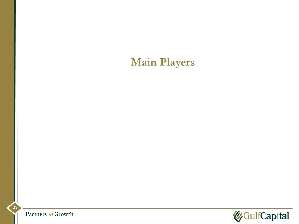 Main Players 28 Partners in Growth