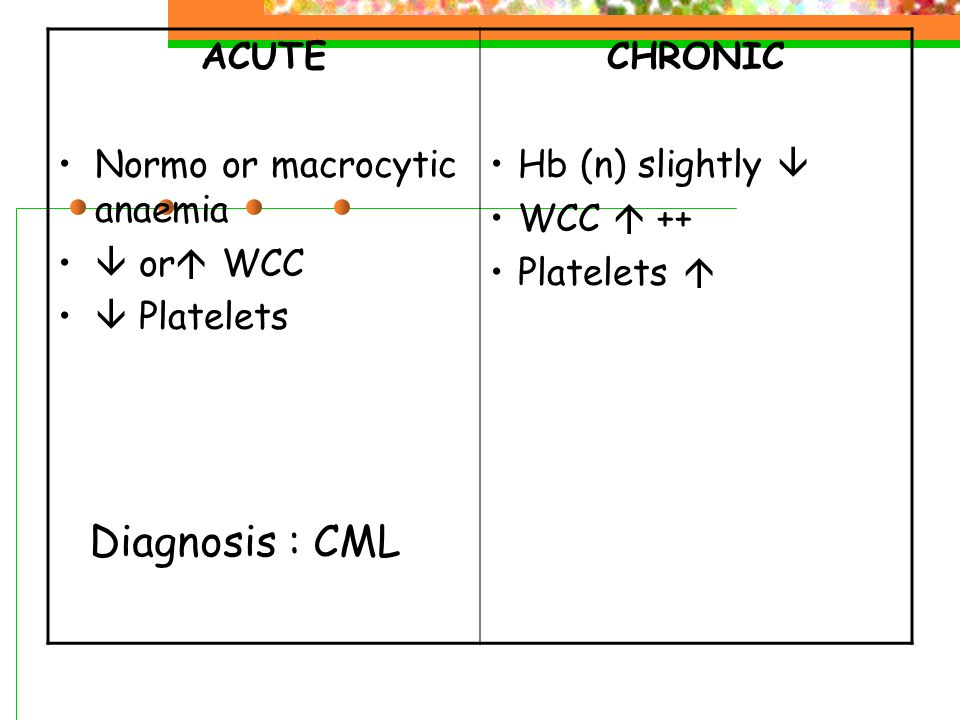 Diagnosis : CML ACUTE Normo or macrocytic anaemia  or WCC