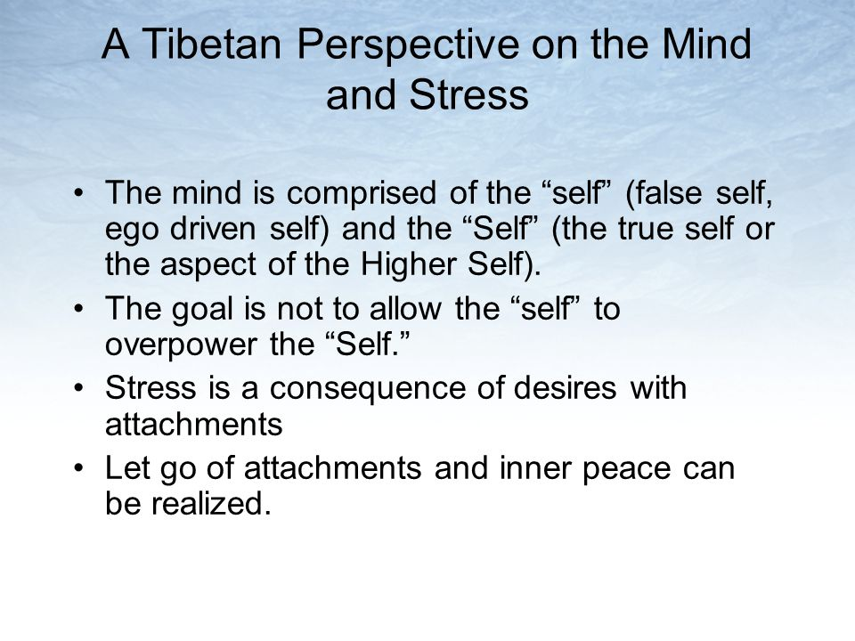 A Tibetan Perspective on the Mind and Stress