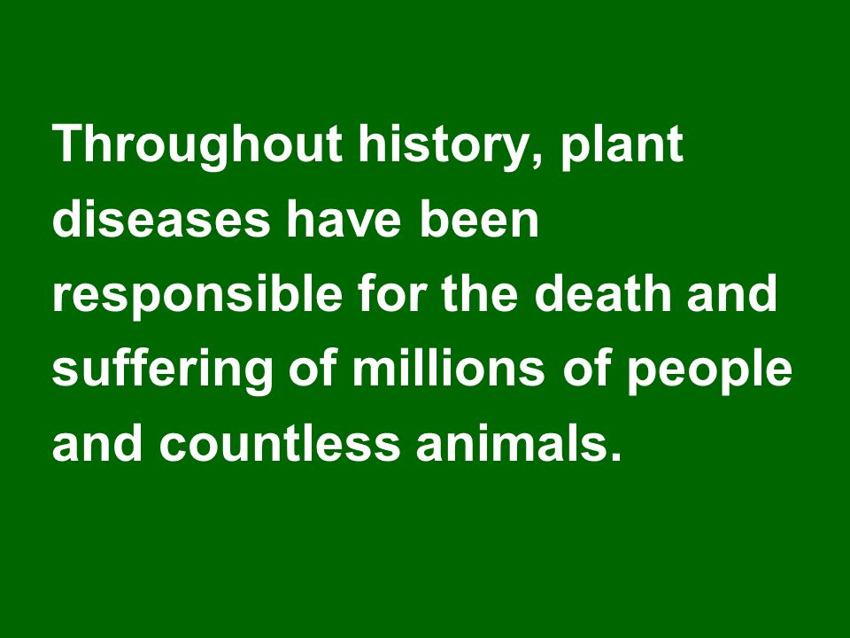 Throughout history, plant