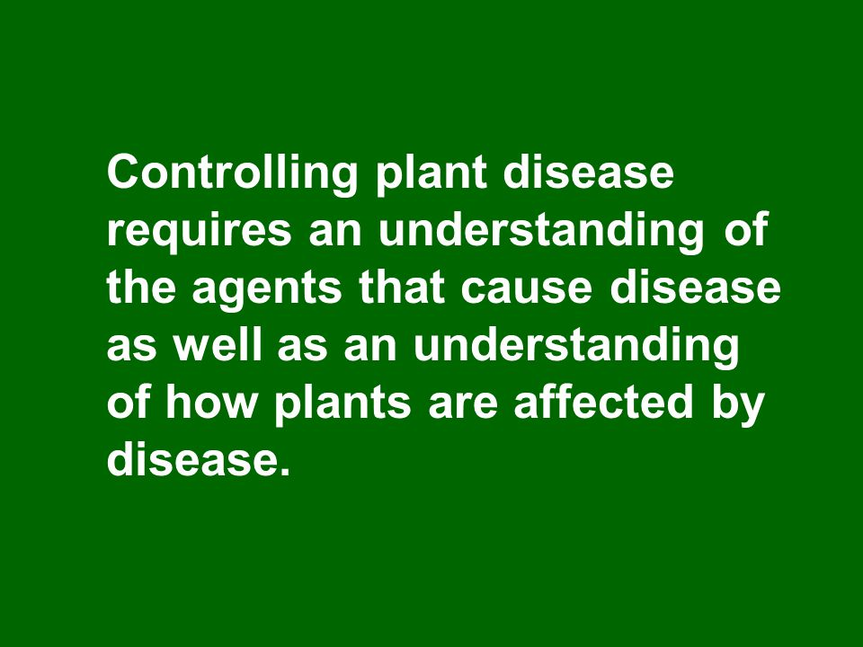Controlling plant disease requires an understanding of the agents that cause disease as well as an understanding of how plants are affected by disease.
