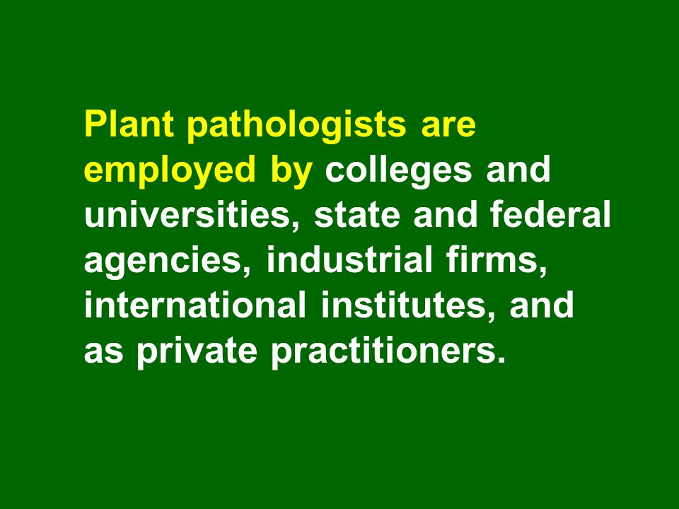 Plant pathologists are employed by colleges and universities, state and federal agencies, industrial firms, international institutes, and as private practitioners.